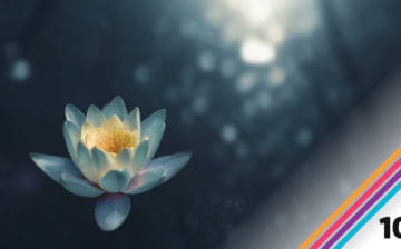 Prokit 10 feature on mindset and meditation
